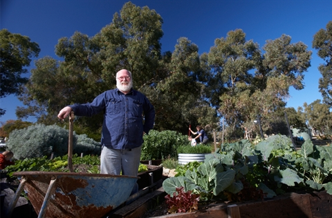 Man standing in community garden