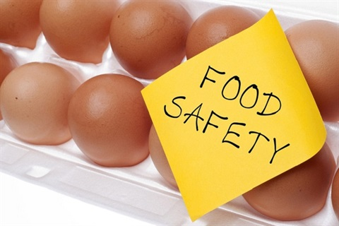 food-safety.jpg