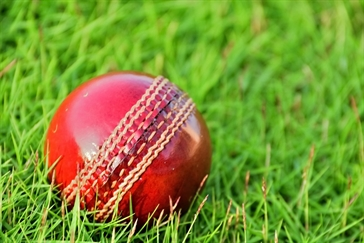 Cricket ball; sport;